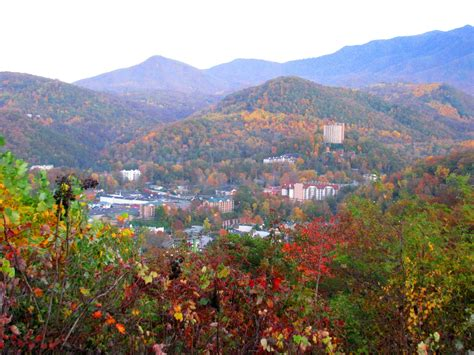 smoky mountain fall colors gatlinburg in fall experience the wilderness
