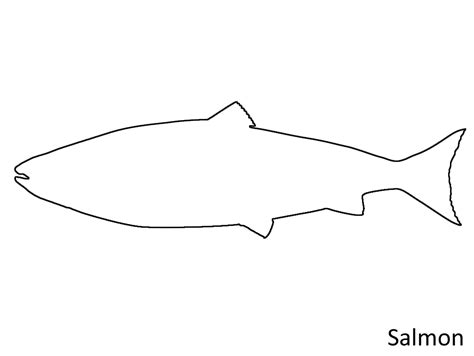 salmon template salmon template 28 images salmon pattern use the