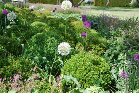 catalogo fiori e piante le piante e i fiori di novembre living corriere