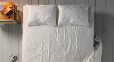 hullo buckwheat pillow 100 hullo buckwheat pillow comfysleep organic