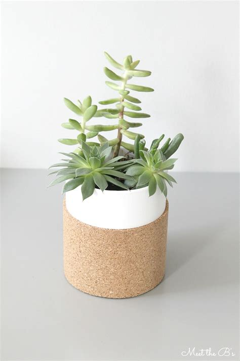 succulent planter diy cork wrapped succulent planter monthly diy challenge