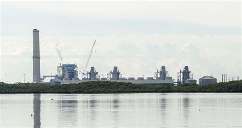 Florida Power Light by Florida Nuclear Power Plant Is Leaking Pollutants That Threaten Water Inhabitat