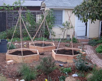 Raised Bed Gardening Ideas Advantages And Disadvantages Of Raised Bed Vegetable