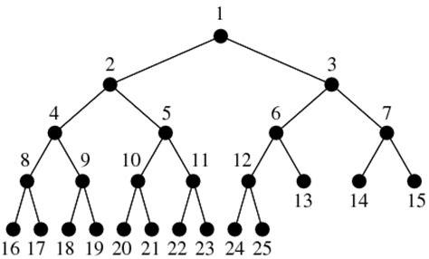 c sharp binary tree program c programming