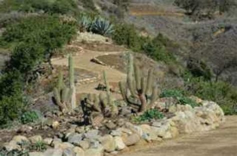 Ventura Botanical Gardens Ventura Botanical Gardens All You Need To Before You Go With Photos Tripadvisor