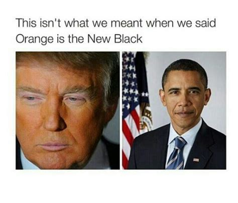 donald trump funny moments 280 best images about donald trump humor on pinterest