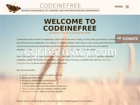 How To Detox From Dihydrocodeine by Codeinefree Codeine Free Is A Support For