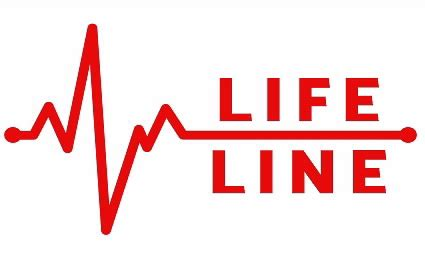 lifeline a parentã s guide to coping with a childã s serious or threatening issue books understanding rates