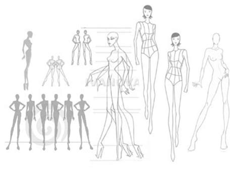 fashion design silhouette templates why real tracing real models