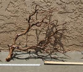 Aquascape Com Manzanita Driftwood Aquascaping Pinterest