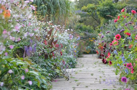 Gardens Flowers The Garden Alex Oxborough