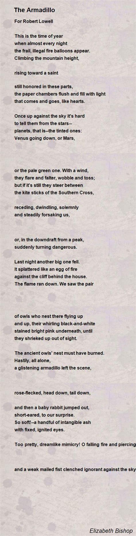 armadillo poem  elizabeth bishop poem hunter comments