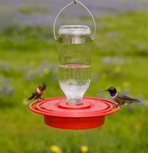quot best 1 quot hummingbird feeder yardbirds