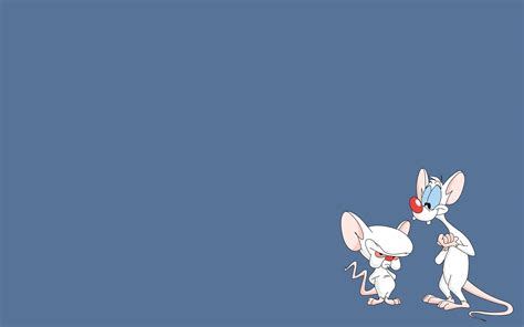 wallpaper pinky pinky and the brain computer wallpapers desktop