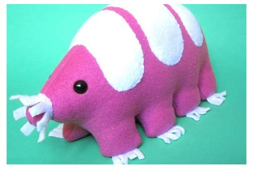 pink plush coupon code