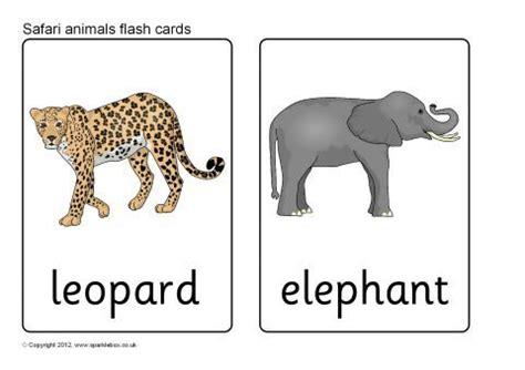 jungle animal flashcards printable safari animal flash cards sb7723 sparklebox