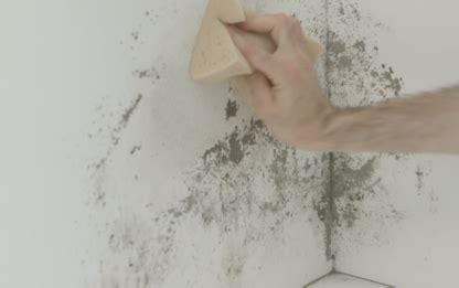 come togliere la muffa dai muri bagno come togliere la muffa dai muri tutorial