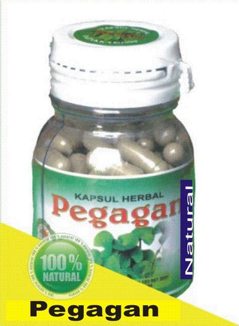 Obat Herbal Pegagan tanaman obat pegagan sehatherba