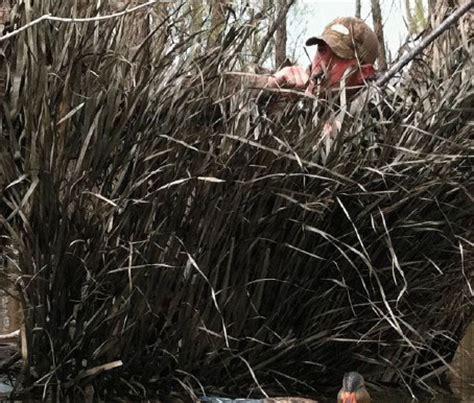 Avery Real Grass Mats prairiewind decoys real grass mats timber grass brown av39012 by avery outdoors greenhead