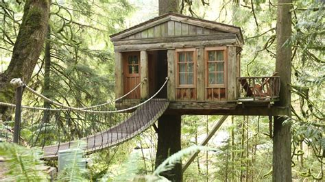 tree house master beautiful treehouse masters tree houses best house design