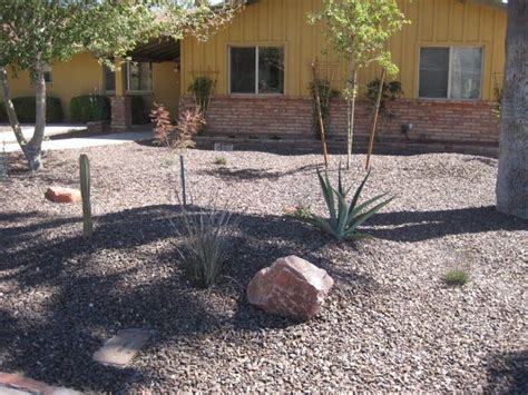 guide and how to do backyard landscaping mesa az