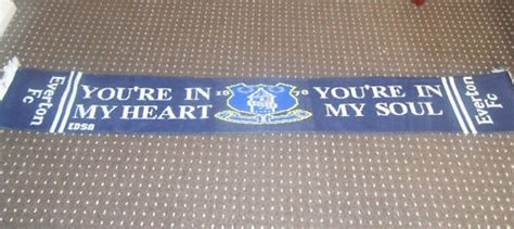 Everton Car Sticker You Re In My