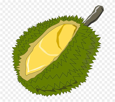 durian  clip art red notary stamp png transparent