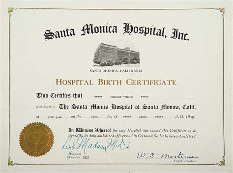 hospital birth certificate template official birth certificate www pixshark images