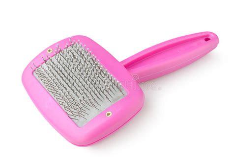 Sr Comb Purple purple comb stock image image of isolated horizontal 20769141