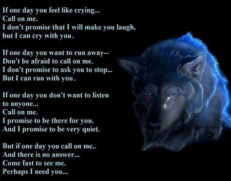 wolfe lyrics 1365 best wolf lyrics images on a wolf wolves