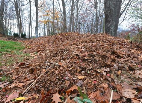 Away To Garden by How To Make And Use Compost With Reich A Way To Garden