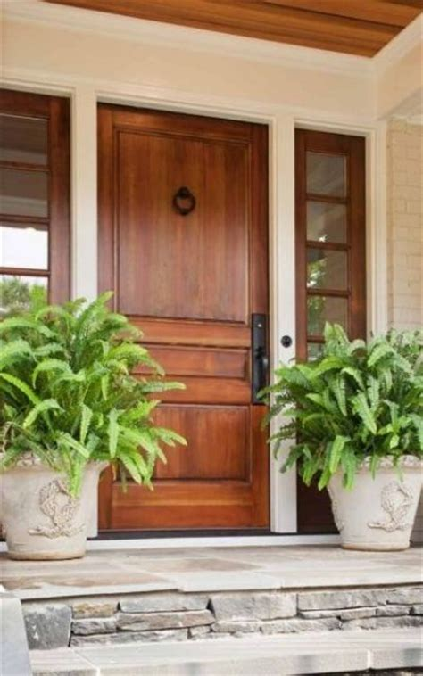 stained front door 27 cool front door designs with sidelights shelterness