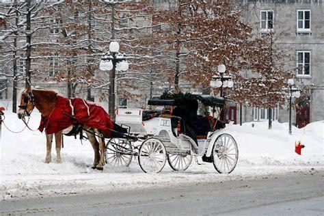carriage ride  quebec city canada        carriage ride