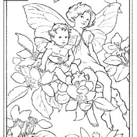 Coloring Pages For Grown Ups Fairies by Coloring Page Shopkins Drawing And Coloring Pages