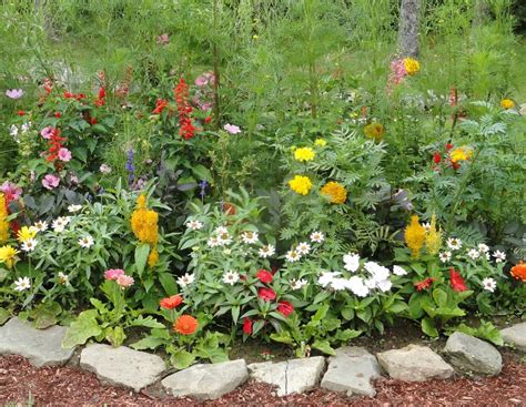 Images Of Flowers Garden Kindred Spirits Planting A Low Cost Simple Flower Garden