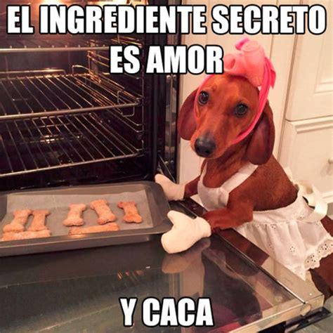 imagenes chistosas haciendo popo el ingrediente secreto es amor humor risa graciosas