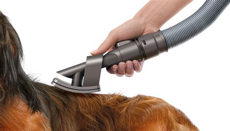 Hair Grooming dyson hair grooming brush technology updates