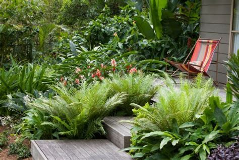 giardino tropicale come creare un giardino tropicale guida giardino