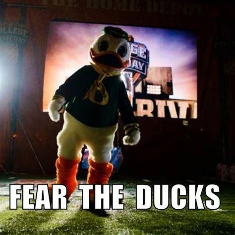 Oregon Ducks Meme - top 25 ideas about love the oregon ducks on pinterest