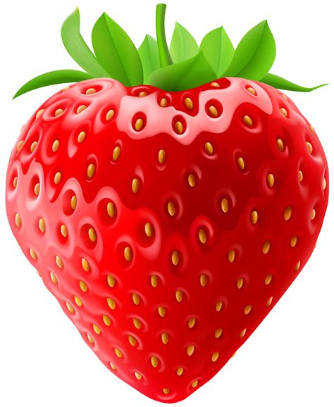 strawberry clipart translucent strawberry clipart clipground
