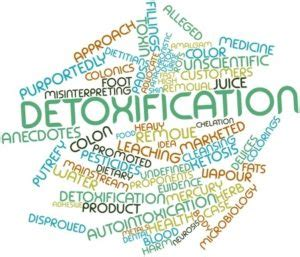 Why Should I Detox by Why Should You Detox Dr William
