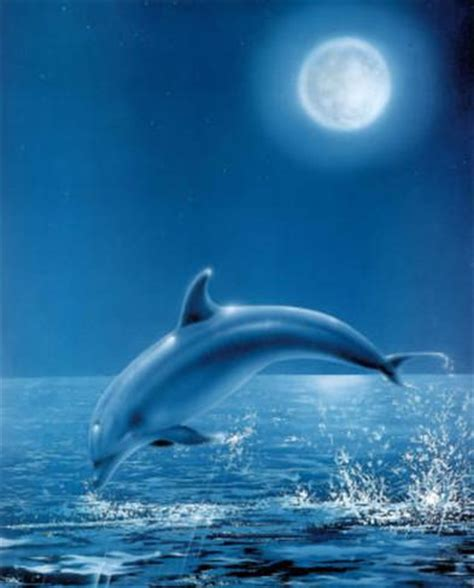 painting that you can print moon dolphin print poster posters at allposters