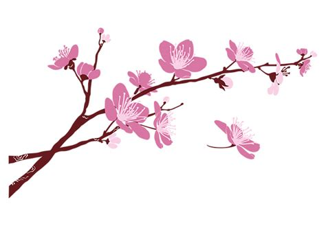 Cherry Blossom Branch 02 Wall Decal Beautiful Floral Cherry Blossom Branch