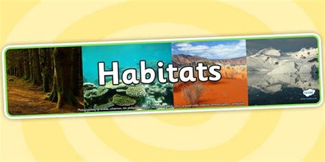 biography banner ks2 62 best images about geography and habitat on pinterest