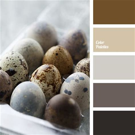 gray and brown paint scheme best 25 gray and brown ideas that you will like on