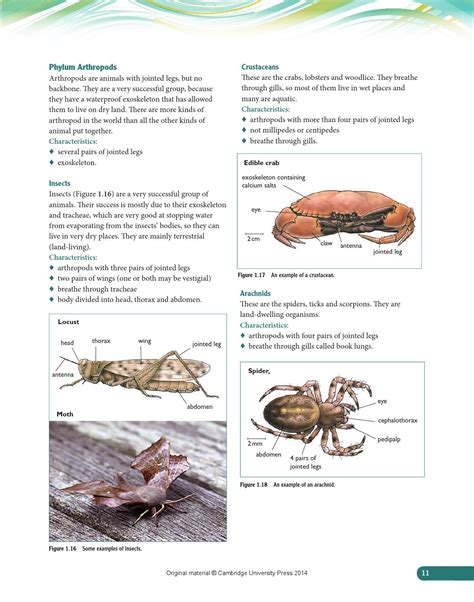 cambridge igcse biology coursebook page 18 jpg
