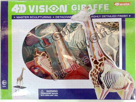 4d Puzzle Black With 3d Detail 4d vision puzzle animal anatomy series 3d model new giraffe cutaway 26106 ebay