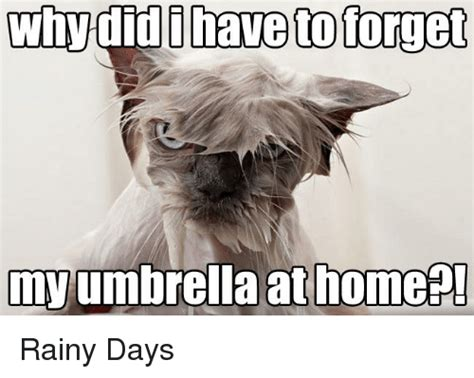Rainy Day Meme - 25 best memes about rainy days rainy days memes