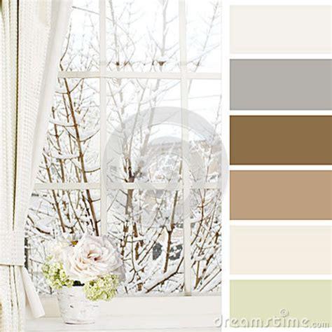 fiori da davanzale finestra nell inverno e fiori di un davanzale immagine
