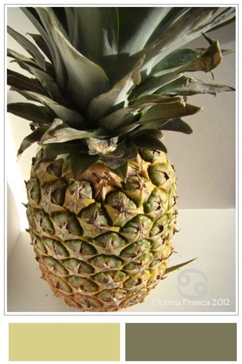 pineapple color color recipes the welcoming pineapple